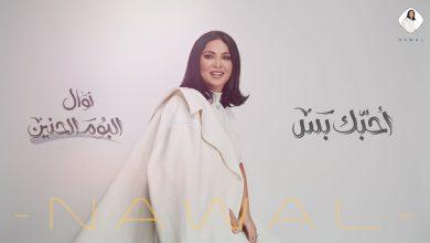 احبك بس نوال الكويتية