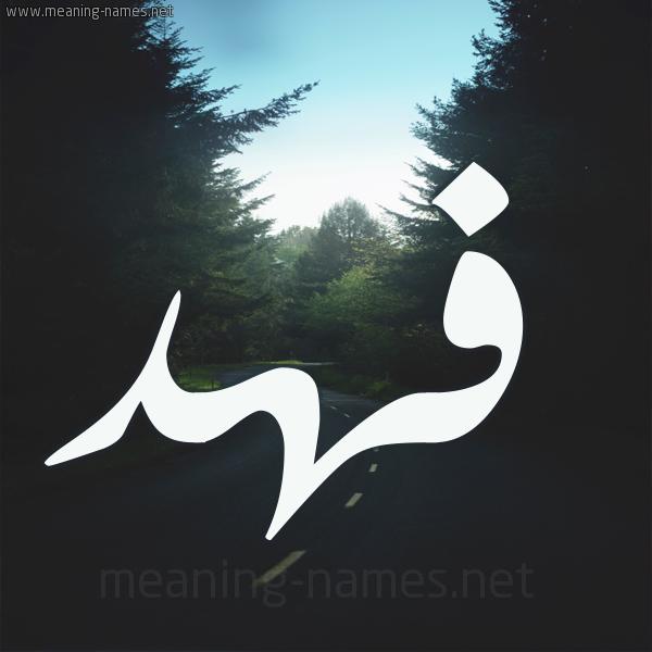 معنى اسم فهد Fahd مجلة المتكتك